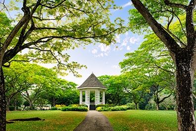 Bus Turistico Singapore/Giardini Botanici/14